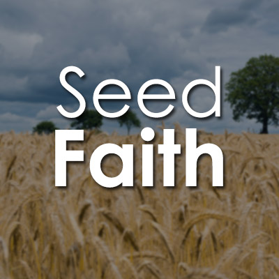 The Blessed House International Church - Seed Faith